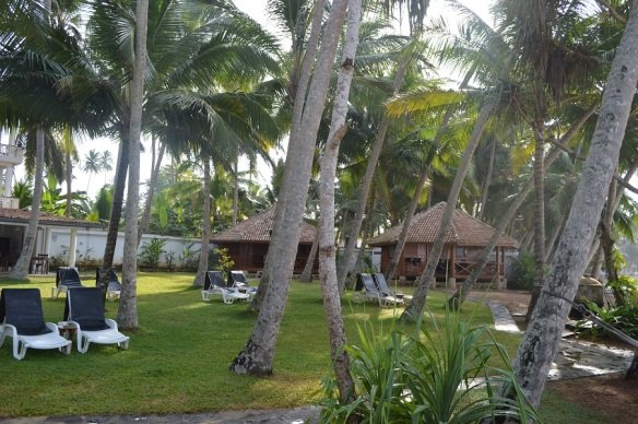 Palmengarten und Cabana 2 und 3