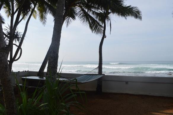Schildkrötenbeobachtungsplatz und Hängematte vor unserer Cabana